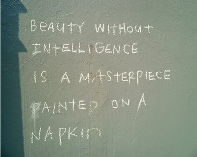 beauty w'out intelligence is a masterpiece painted on a napkin