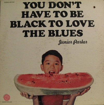 you don't have to black to love the blues