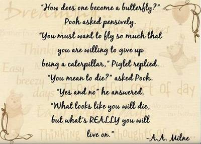 pooh, how does one become a butterfly pooh