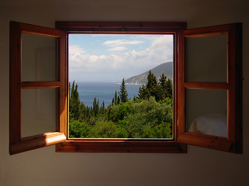 nature window with a view