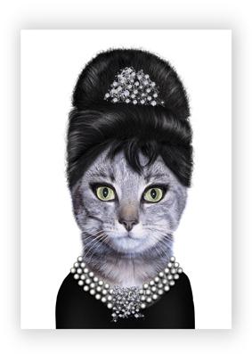 Audrey web card