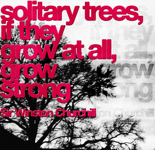 solitary trees, if they grow at all grow strong