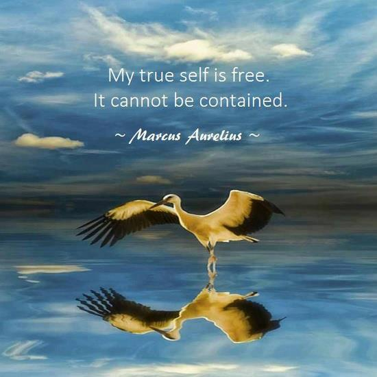 my true self is free