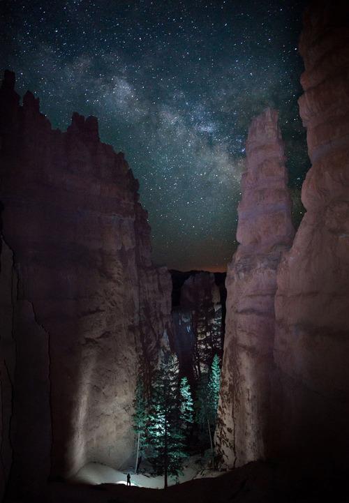 stars canyon trees