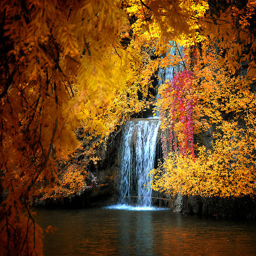 fall gold and red waterfall