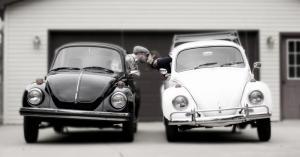 b:w beetles